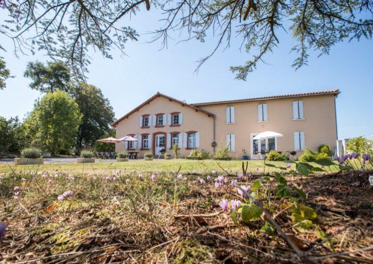 Magnifique maison rénovée + maison d'amis