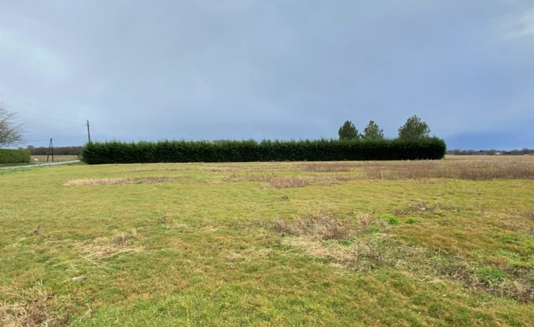 Beau terrain plat avec vue dégagée 1