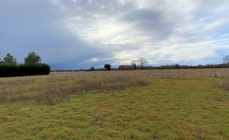 Beau terrain plat avec vue dégagée 2